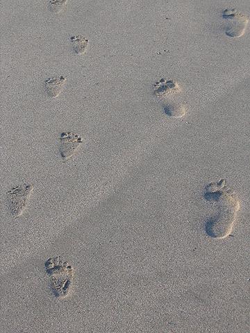 Die ersten Schritte zur eigenen Magento-Extension. (c) Cee-Bee auf flickr.com